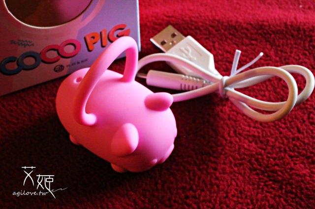 Play&Joy CoCo Pig可可豬