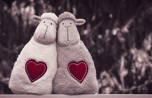 愛心羊情侶
